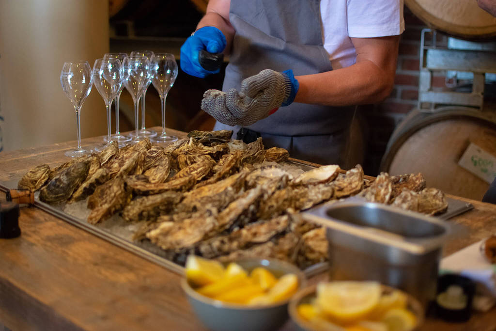 Hattingley Valley Wines - Visiting a British winery from London in a day - Wine and oysters