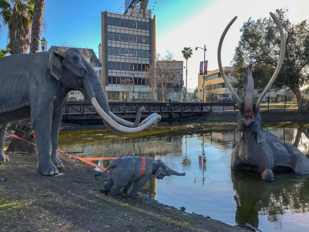 Areas of LA - La Brea Tar Pits