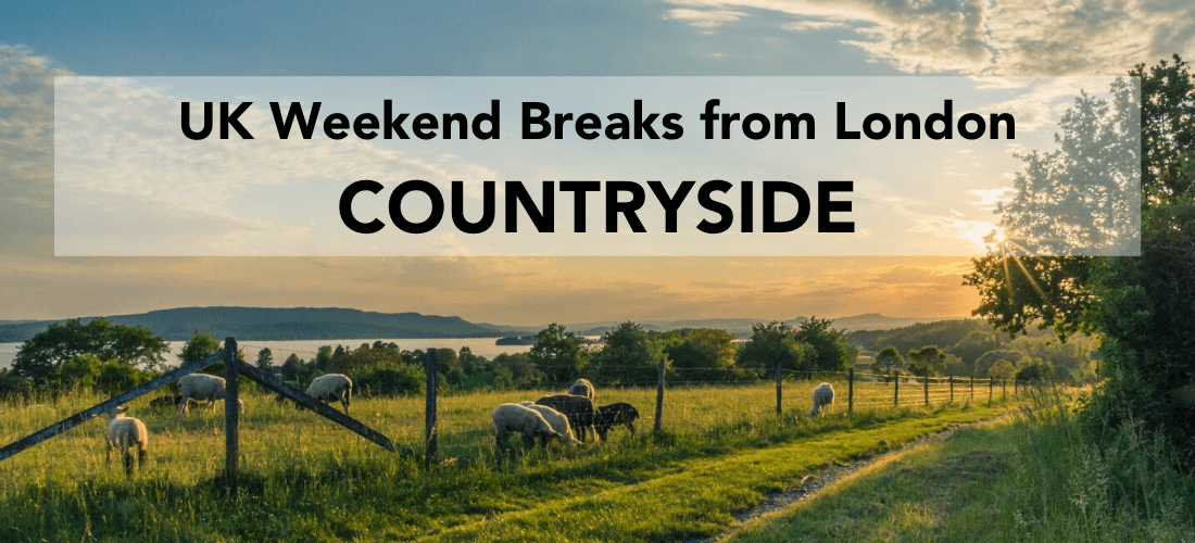 Weekend countryside breaks from London, field with horses at sunset and heading